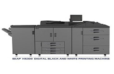 What is Theory of the Black and White Digital Press?